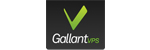 Gallant VPS Logo